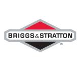 Запчасти Briggs Stratton